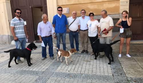 Immagine: Menfi, riparte il servizio di registrazione all'anagrafe canina