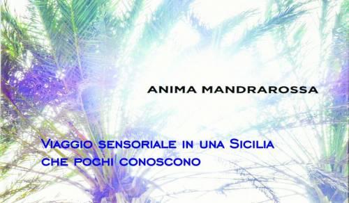 Immagine: Anima Mandrarossa, l'evento che guarda al cuore del territorio